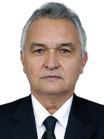 Foto do Deputado GENERAL GIRÃO
