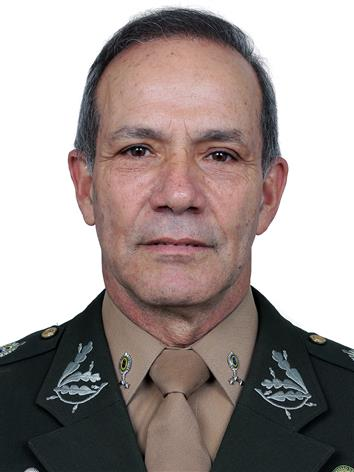 Foto do(a) deputado(a) General Peternelli