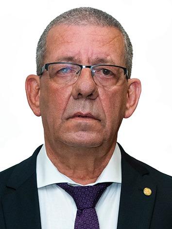 Foto de perfil do deputado Ricardo da Karol