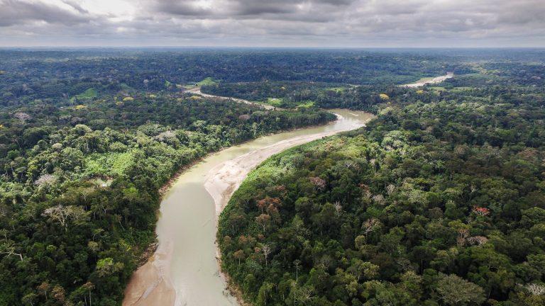 rio em meio a floresta