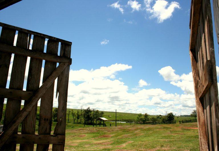 Agropecuária - geral - fazendas propriedades reforma agrária produção rural