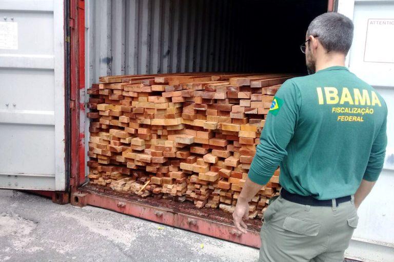 Meio Ambiente - queimada e desmatamento - fiscalização Ibama madeira ilegal madeireiras