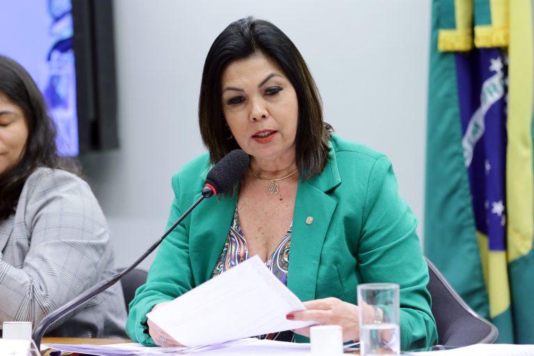 """Audiência Pública - Tema: """"Aprimoramento do Projeto de Lei do Pantanal, o PL 9950/19"""". Dep. Bia Cavassa (PSDB-MS)"""