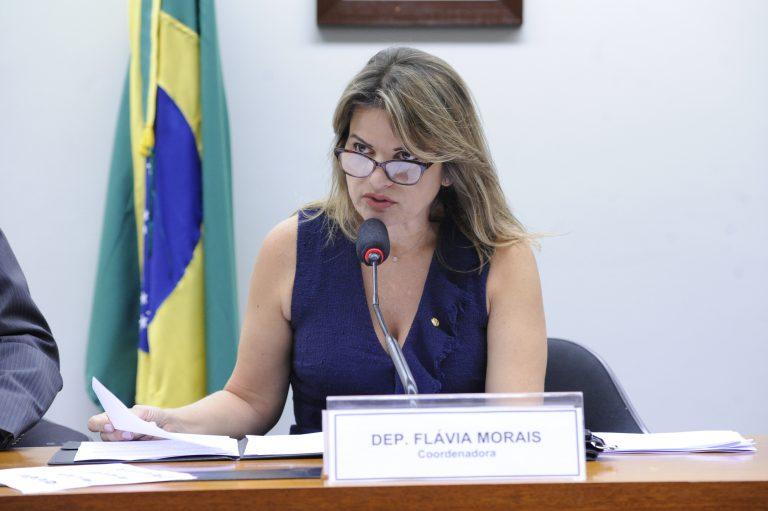 Audiência Pública, C. Externa Obras Inacabadas no País (CEXOBRAS). Dep. Flávia Morais (PDT - GO)