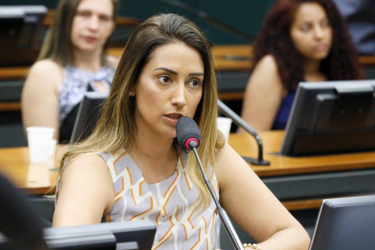 Audiência Pública -Tema: Protocolos de atendimento no combate à violência contra mulher. Dep. Flávia Arruda (PL-DF)