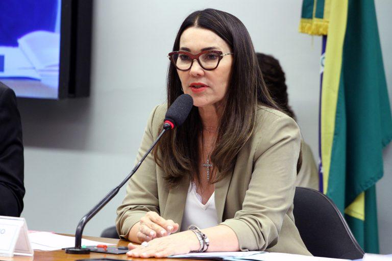 Reunião Ordinária - Pauta: Continuação da Discussão e Votação do Relatório do Relator, Dep. Capitão Augusto (PL/SP). Dep. Margarete Coelho (PP - PI)