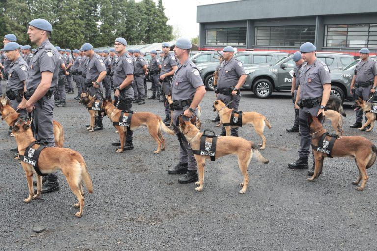 Segurança - policiais - Polícia Militar cães cachorros soldados (Batalhão da PM em Piracicaba-SP)