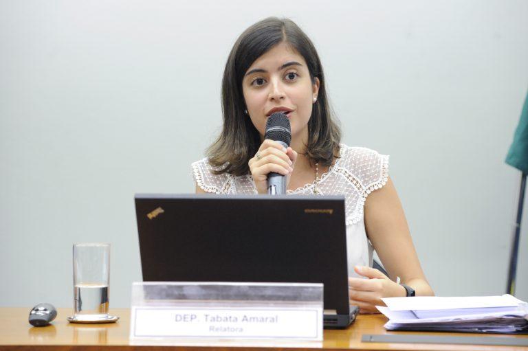 """Audiência Pública - """"Riscos e Oportunidades Financeiros da Política Ambiental"""". Dep. Tabata Amaral (PDT - SP)"""