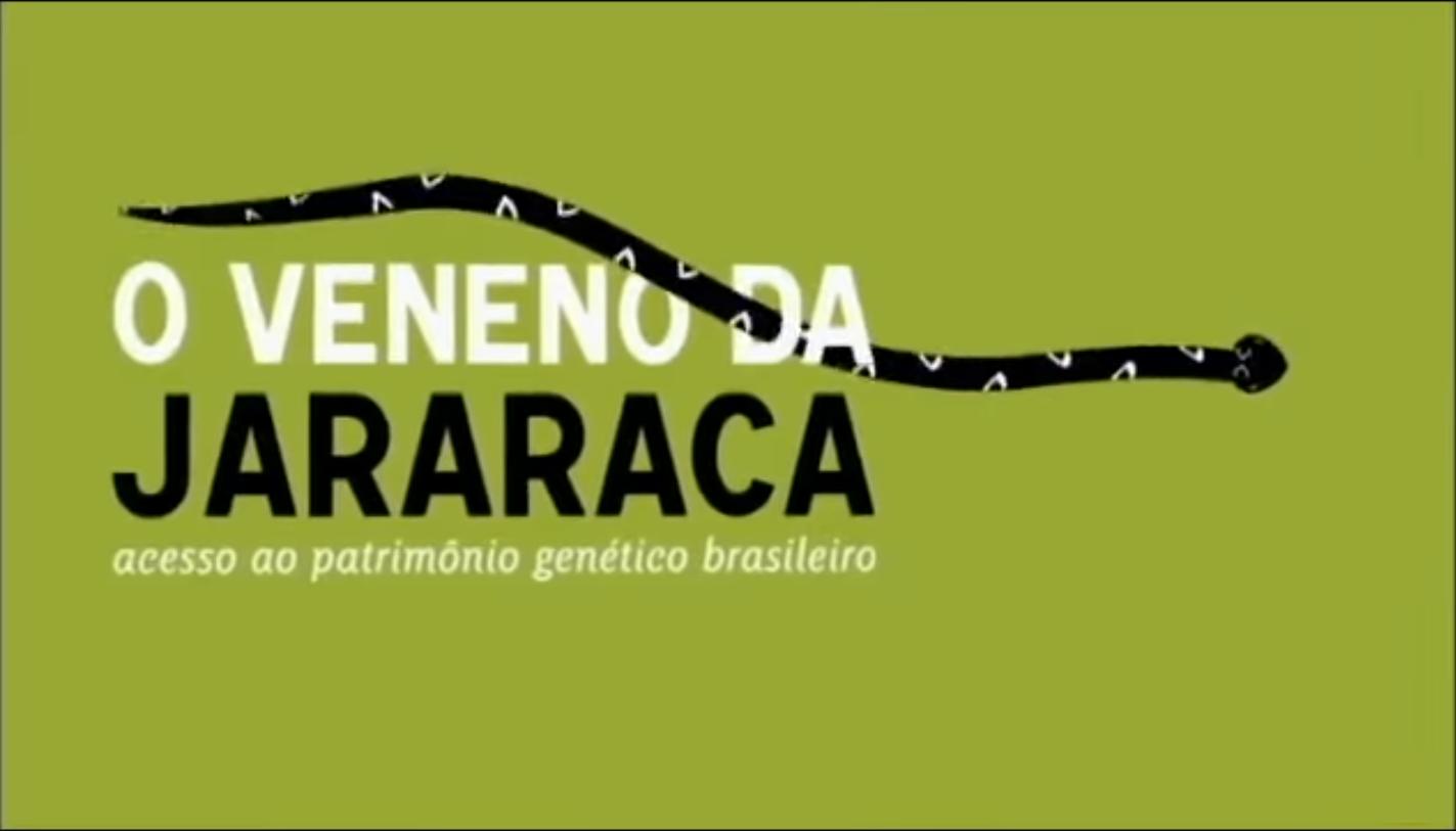 O Veneno da Jararaca – acesso ao patrimônio genético brasileiro