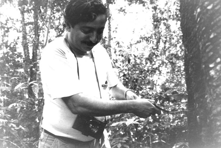 Meio Ambiente - geral - chico mendes seringueiro seringal borracha extrativismo reserva extrativista amazônia acre líder desmatamento socioambiental
