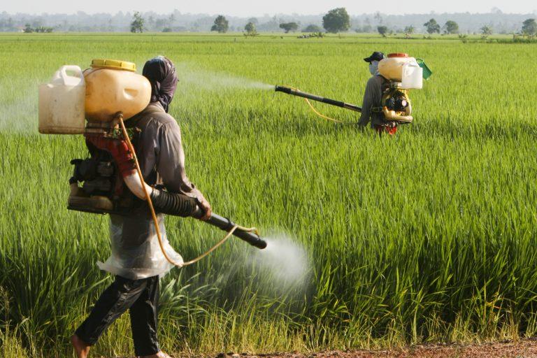 Agropecuária - agrotóxicos