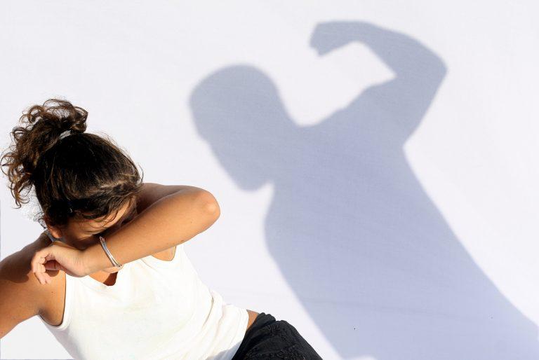 Mulher. Violência doméstica. Agressão. Lei Maria da Penha