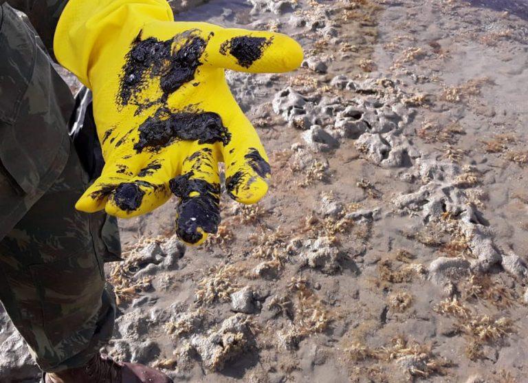 Meio Ambiente - geral - poluição óleo petróleo praias litoral tragédia ambiental