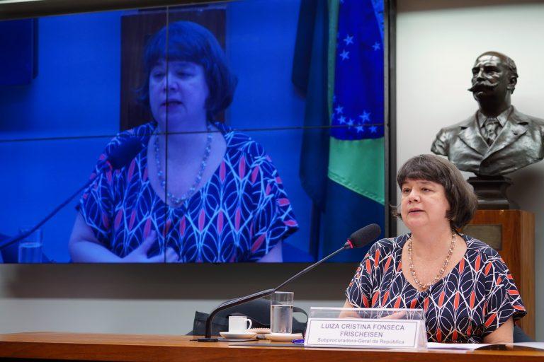 Audiência Pública - Prisão em 2ª Instância. Subprocuradora-Geral da Republica, Luiz Cristina Fonseca Frischeisen