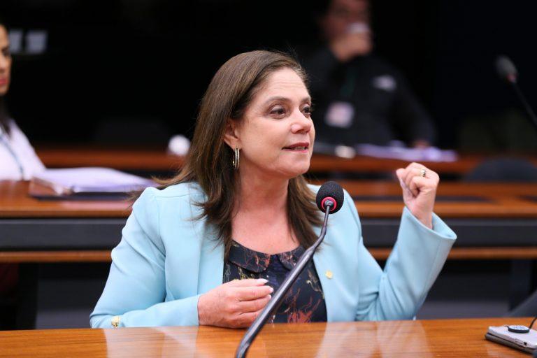 Audiência Pública - Medidas de prevenção e combate ao novo Coronavírus. Dep. Soraya Santos (PL - RJ)