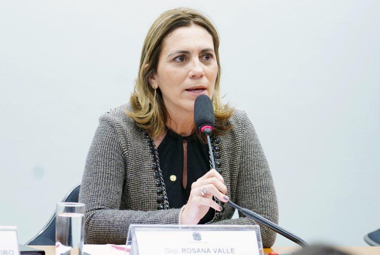 Audiência pública sobre o PL 9003/2017 e PL 6764/2016 que tratam da profissão de gerontólogo. Dep. Rosana Valle (PSB-SP)