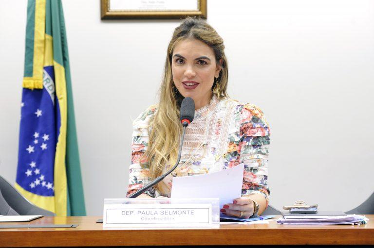 Audiência Pública. Dep. Paula Belmonte (CIDADANIA - DF)