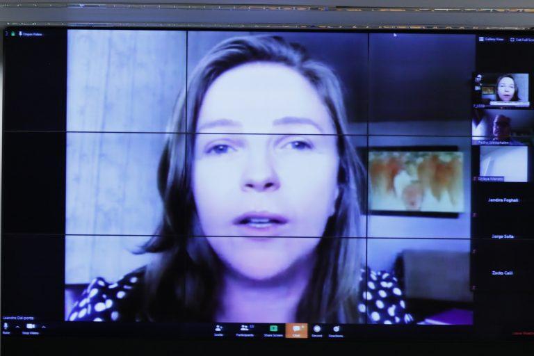 Reunião de Trabalho por videoconferência. Dep. Leandre (PV - PR)