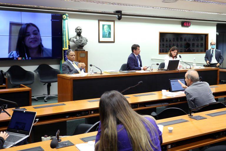Reunião técnica por videoconferência - Benefício de Prestação Continuada e Auxílio Emergencial