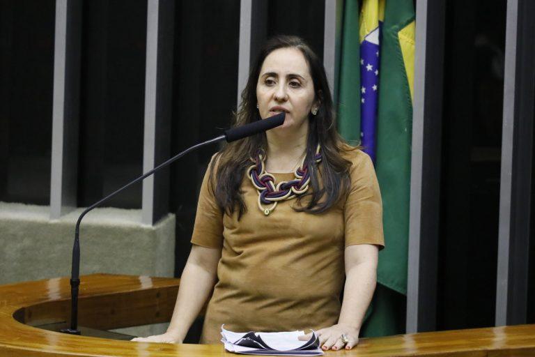 Ordem do dia para discussão e votação de diversos projetos. Dep. Adriana Ventura (NOVO - SP)