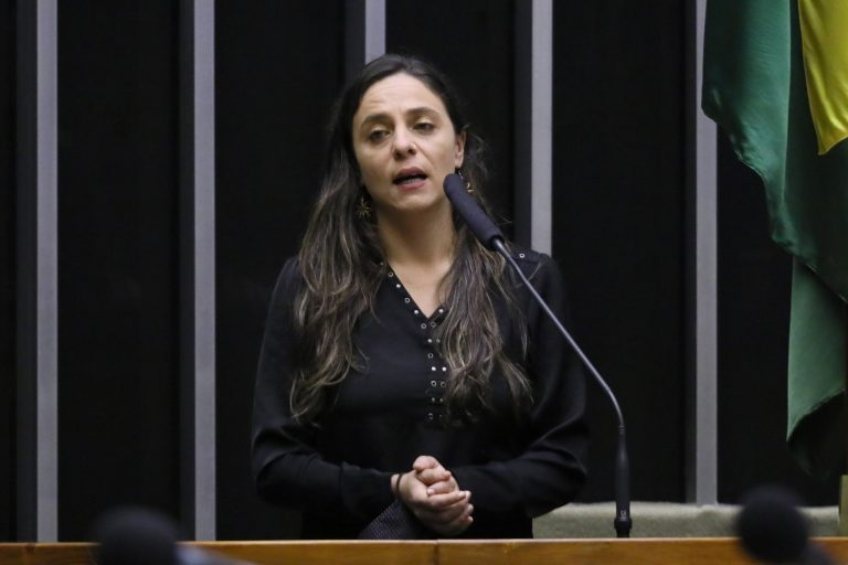 Ordem do dia para votação de propostas legislativas. Dep. Fernanda Melchionna (PSOL - RS)