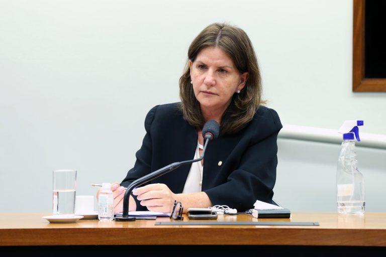 Reunião de trabalho por videoconferência - Balanço das ações da Comissão e debate de projetos a serem propostos ao Plenário da Câmara dos Deputados. Dep. Carmen Zanotto (CIDADANIA - SC)