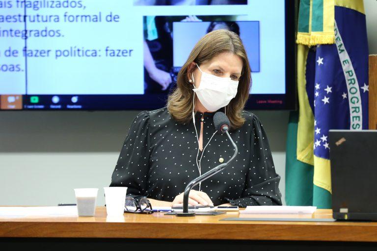 Reunião técnica por Videoconferência - Apresentação de relatório sobre Instituições de Longa Permanência para Idosos. Dep. Carmen Zanotto (CIDADANIA - SC)