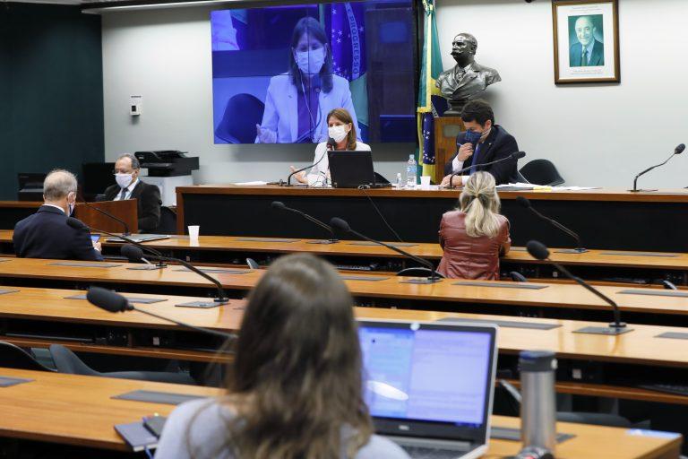 Reunião Técnica por videoconferência - Panorama da Pandemia no Brasil. Dep. Carmen Zanotto (CIDADANIA - SC) e dep. Dr. Luiz Antonio Teixeira Jr. (PP - RJ)