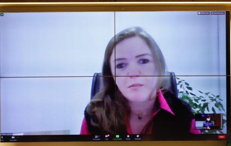 Reunião Técnica por videoconferência - A Atuação dos Consórcios de Saúde no SUS e durante a Pandemia. Dep. Leandre (PV - PR)
