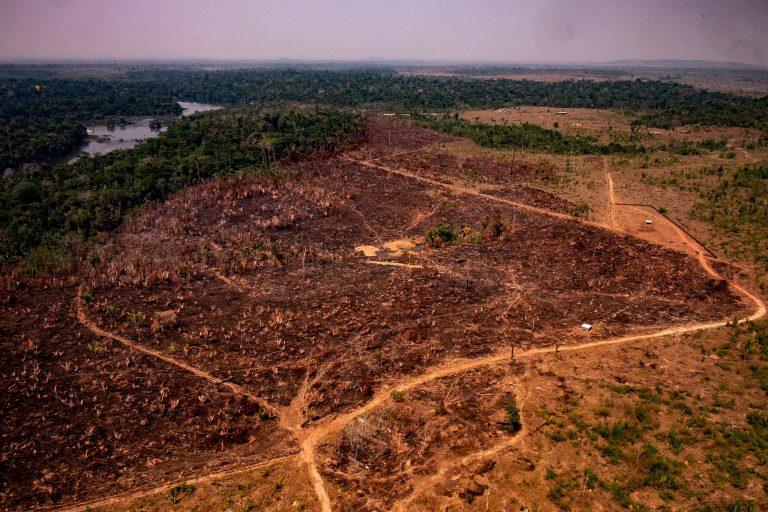Meio Ambiente - queimada e desmatamento - Amazônia florestas destruição desmatadores preservação ambiental aquecimento global bioma amazônico (Operação Verde Brasil em Rondônia)