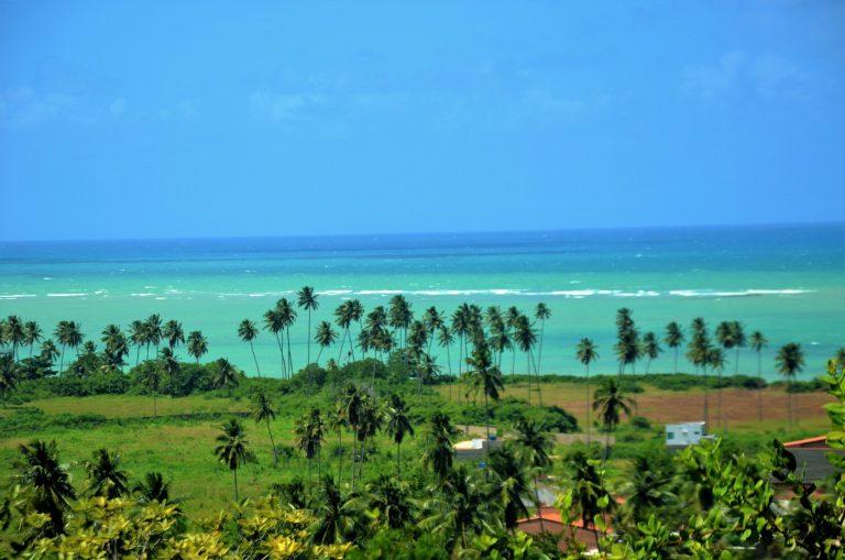Turismo - Brasil - praias litoral verão férias vegetação costeira turistas coqueiros (São Miguel dos Milagres-AL)