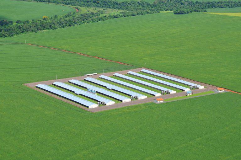Vista aérea de aviário da Cooperativa agroindustrial C. Vale, em Toledo (PR)