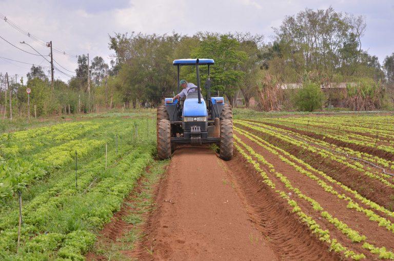 Agropecuária - plantações - agricultura agricultores produção agrícola pequenas propriedades rurais tratores