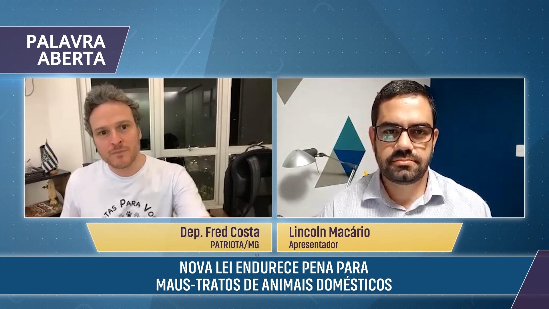 Nova lei endurece penas para maus-tratos a animais domésticos