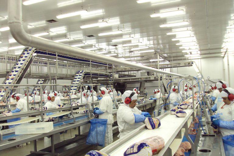 Funcionários trabalham num frigorífico embalando frangos