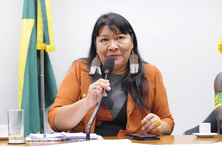 Discussão do PL 191/20 e os retrocessos nos processos de demarcação, regularização das terras indígenas Pataxó Barra Vermelha e Tupinambá de Olivença. Dep. Joenia Wapichana (REDE - RR)