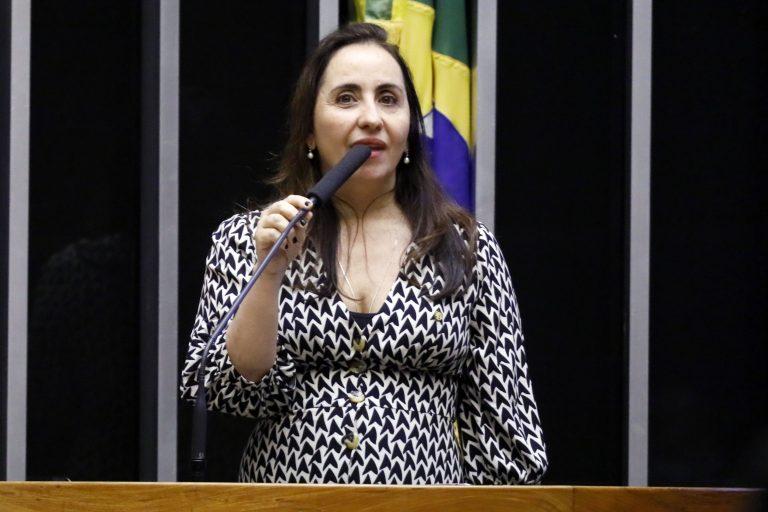 Ordem do dia. Dep. Adriana Ventura(NOVO - SP)