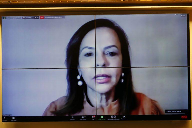 Lançamento do Grupo de Trabalho sobre Mulher e Economia da Secretaria. Dep. Professora Dorinha Seabra Rezende (DEM - TO)