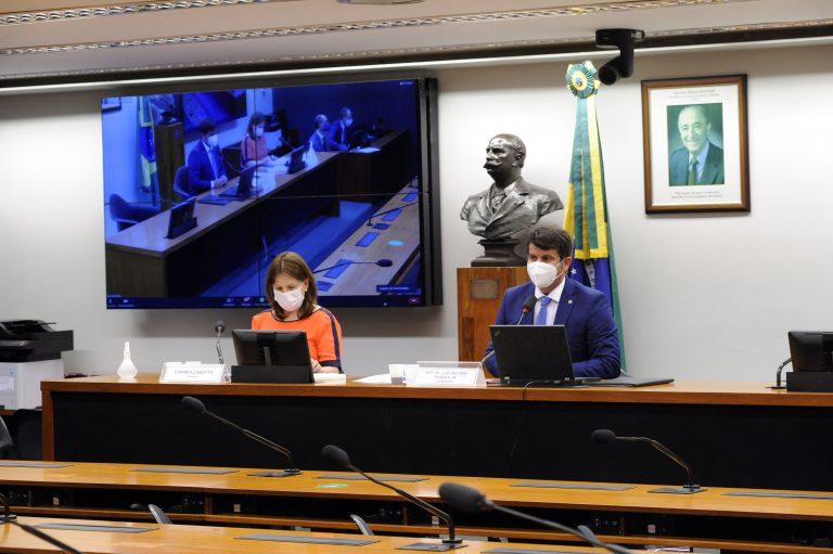 Deputados Carmen Zanotto e Dr. Luiz Antonio Teixeira Jr. à mesa