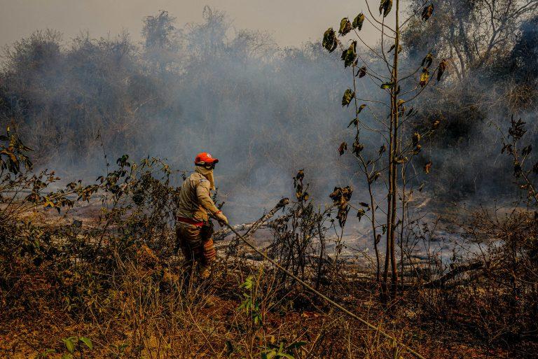 Meio Ambiente - queimada e desmatamento - Bombeiros militares do Mato Grosso fazem teste com retardante para combater incêndios no Pantanal