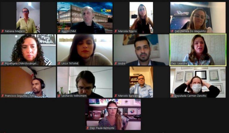 Reunião virtual da Frente Parlamentar da Primeira Infância