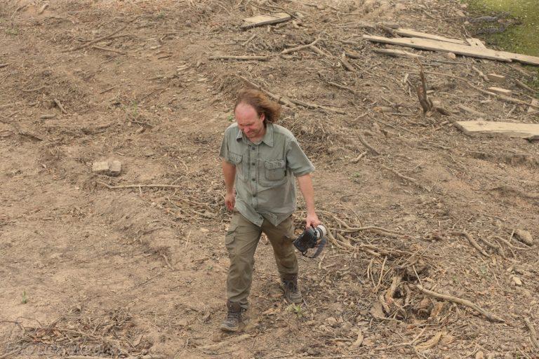 Deputado Rodrigo Agostinho caminha no meio da mata queimada no Pantanal