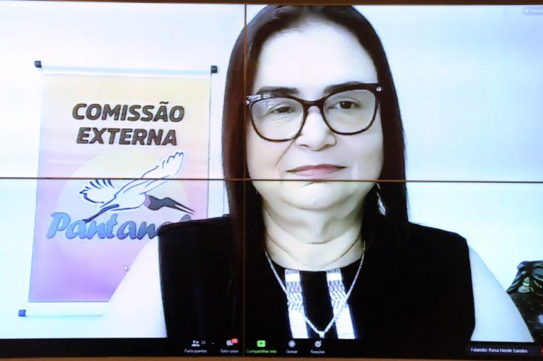 Deputada Professora Rosa Neide participa de videoconferência