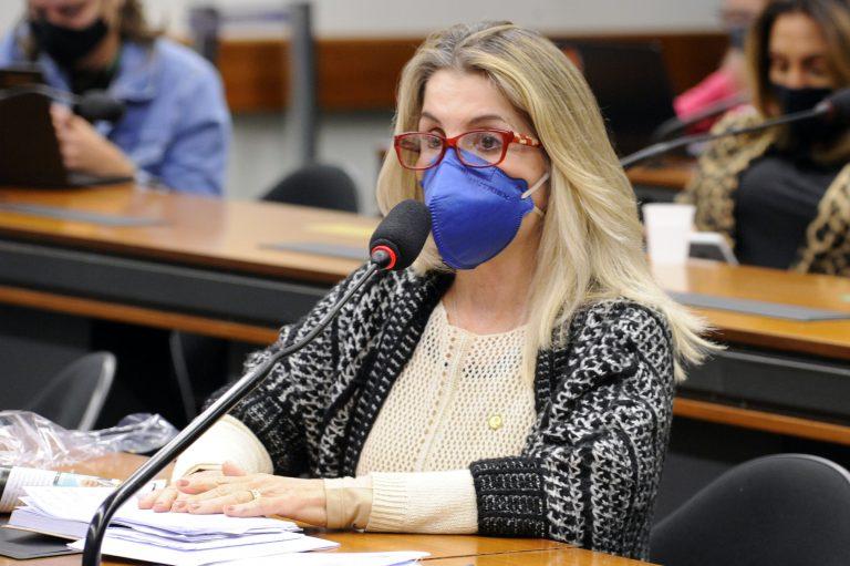 Dep. Dra. Soraya Manato (PSL - ES) usa máscara em plenário de comissão
