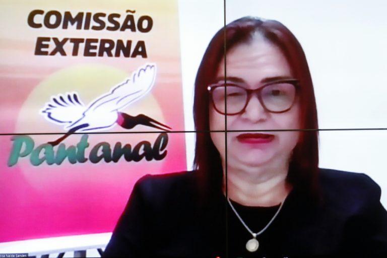 Os impactos da crise hídrica na região pantaneira. Dep. Professora Rosa Neide(PT - MT)