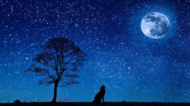 madrugada enluarada e estrelada