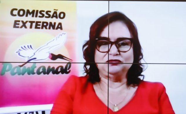 Artistas e personalidades em defesa dos Biomas Brasileiros. Dep. Professora Rosa Neide(PT - MT)