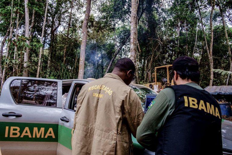 Fiscais do Ibama fiscalizam um local com árvores. Ao fundo há um carro do Ibama e um trator