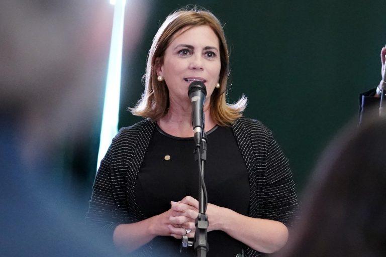 Deputada Rosana Valle está de pé falando ao microfone