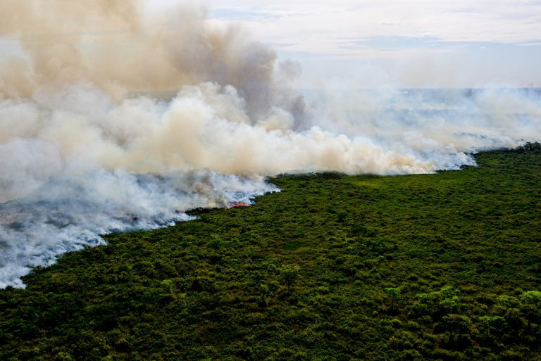 Incêndios florestais no Pantanal, agosto de 2020